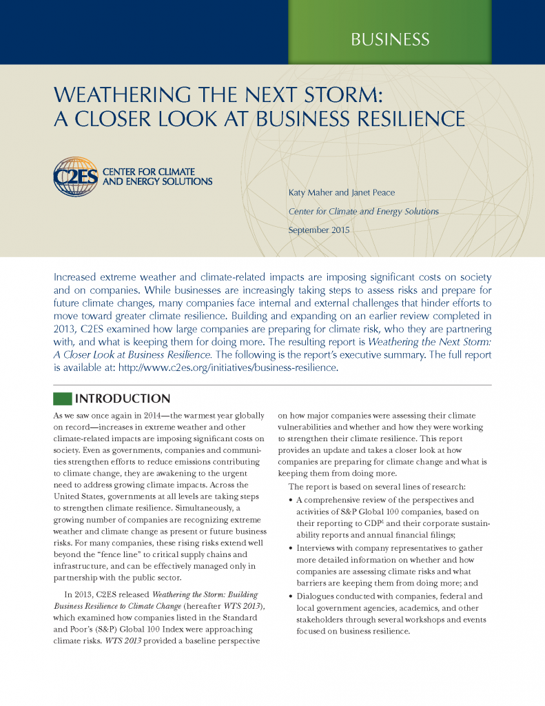 weathering the next storm  a closer look at business