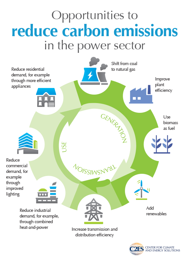 Regulating power sector carbon emissions center for for Ways to cut cost when building a house
